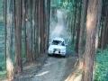 [海外新车]三菱四驱帕杰罗森林体验报告
