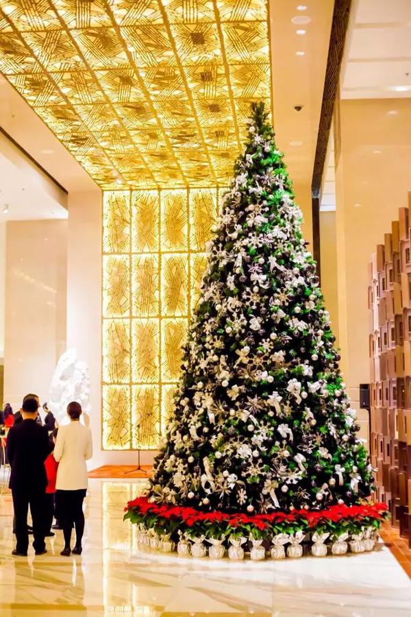 龙虾海鲜汤_京城最美圣诞树,主要看气质