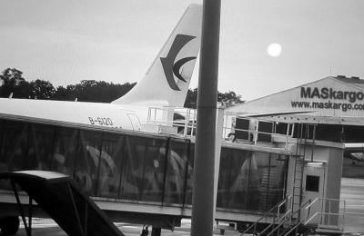 网友拍到客机尾翼部分出现疑似损坏。微博图片