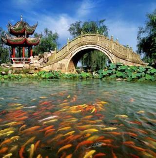 岳阳是本次所选的唯一一座三线内陆城市。岳阳既是长株潭城市群的重要一员,也是长江洞庭湖流域的重要中心城市,自古便是著名的鱼米之乡。