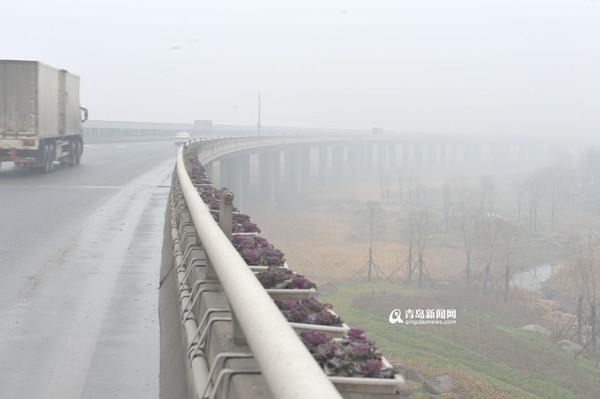 青岛雾霾黄色预警 这五个防霾小贴士你知道吗