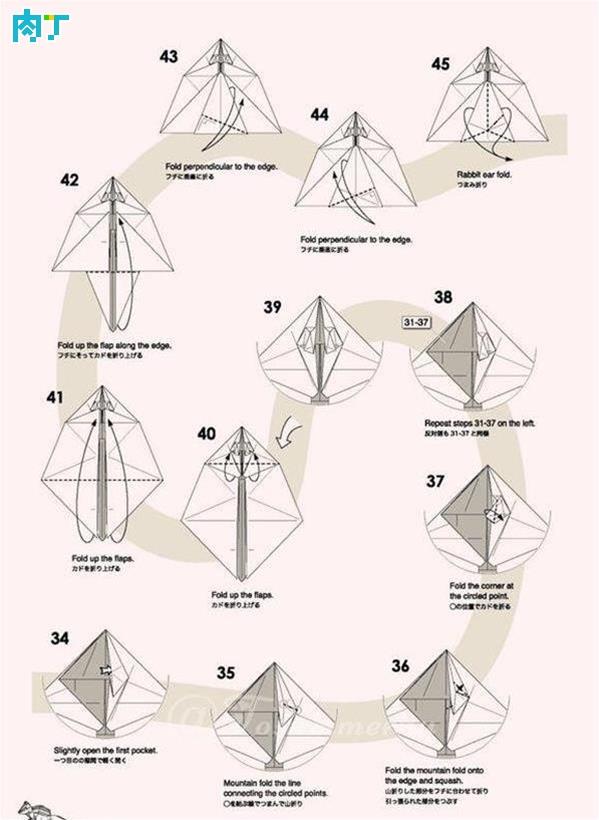 【世漫陶缘】复杂小动物折纸 萩原元花栗鼠折纸