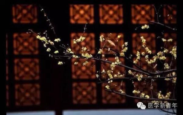 关于雨的诗词_汪建新:毛泽东诗词的时代价值与现实意义组图