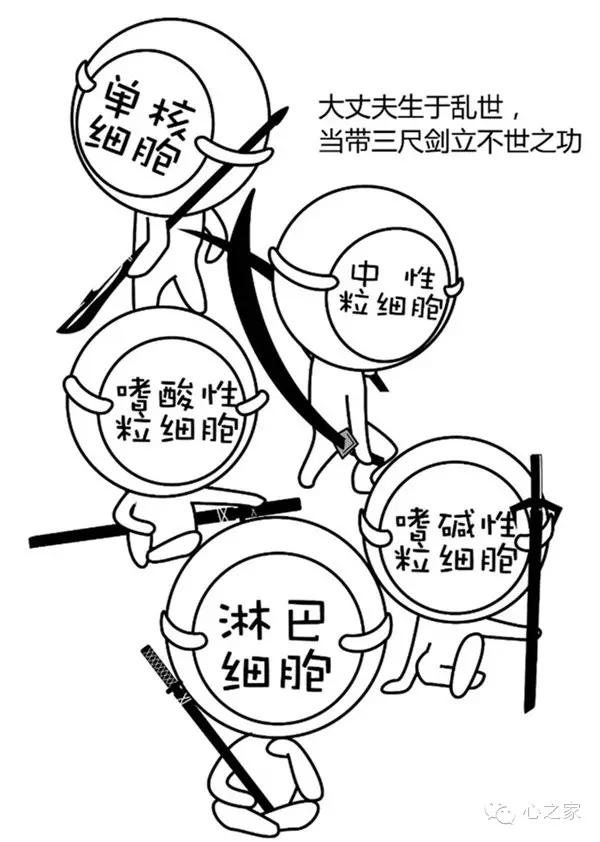 炎症细胞手绘图红蓝笔