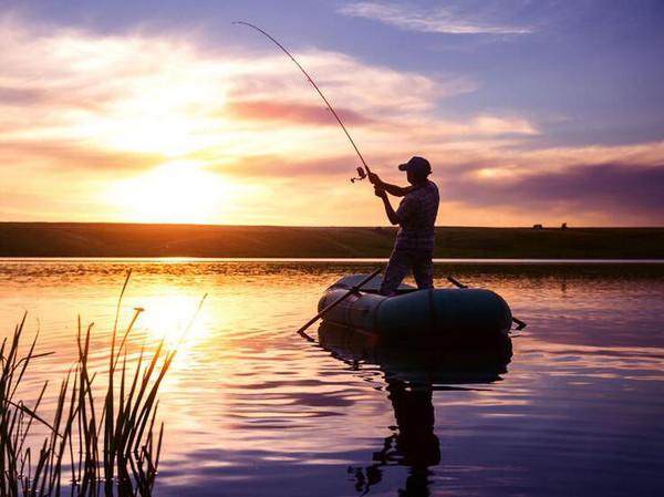 干你要你爽_钓鱼最爽的几件事,你做过几个?
