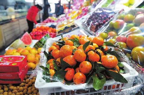 从前四五元一斤的沙糖橘,本年价钱翻一番 本报记者 阚璇 摄