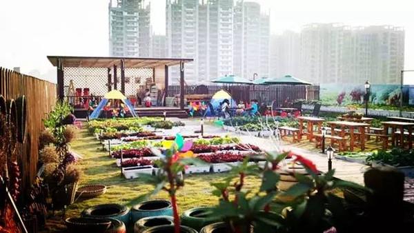 【鱼游记】武汉都市水泥森林天空中,深藏一座农场都市