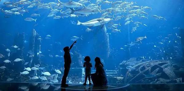 位于迪拜最具创意的人工岛——棕榈岛新月中央的棕榈岛亚特兰蒂斯度图片