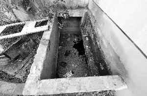 据称,池中水深5米