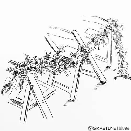 """教学团队简介:鹿石花艺手绘教学团队为""""中国新青年设计师联盟""""成员,作"""