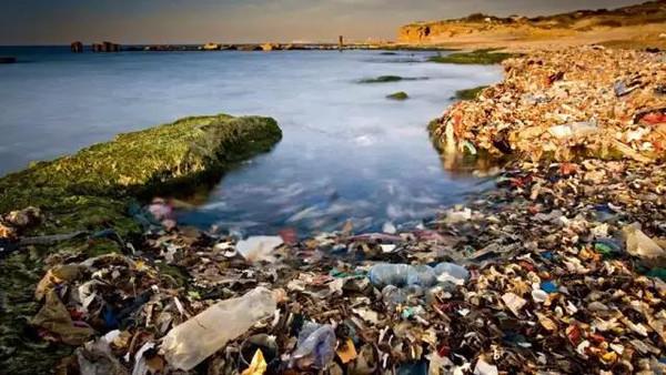 """海洋塑料垃圾 最终""""回馈""""给了谁?--变宝网"""