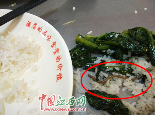南昌大学食堂饭菜现蚯蚓 回应称不便透露信息(图)