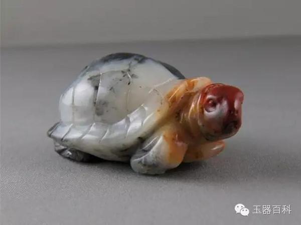 ,人们认为神龟龟甲里蕴藏着天命的图片