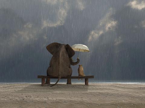 人生难免会有不如意的岁月,朋友会聆听你的倾诉,能感受到你的经历
