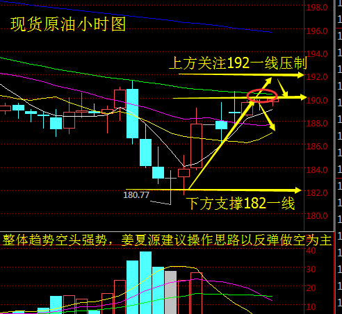 姜夏源:API利空,油价惨跌不止,EIA推迟原油如何操作?