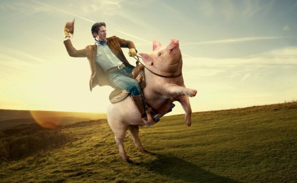 大月支国的小马驹看到人们用酥油煎麦喂猪,而自己却吃草和泔水,心中十分羡慕。母马便对小马驹说: