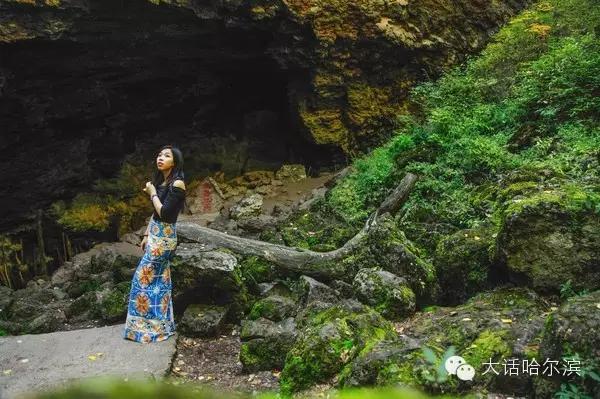 """形成了低陷的奇特罕见的""""地下森林"""",故称火山口原始森林.图片"""