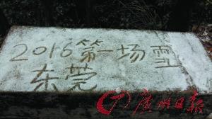 大岭山森林公园一景。广州日报记者卢政 摄