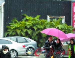 昨天中午,市区,大片雪花飘落。广州日报记者石忠情 摄
