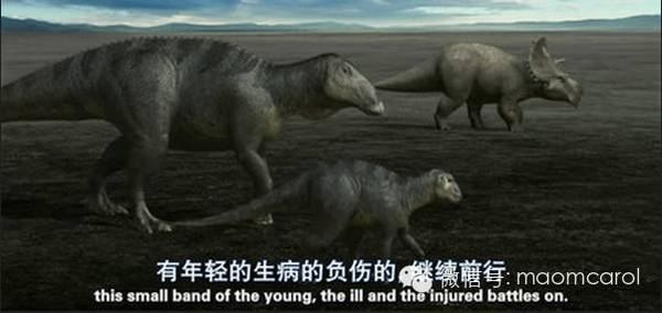 关于恐龙的纪录片_这些恐龙有关的电影、绘本送给资源荒的宝妈们