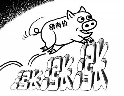 梦见猪跑了没追回来了