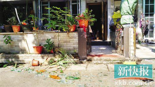 小院子内外,玻璃、花盆等碎了一地。
