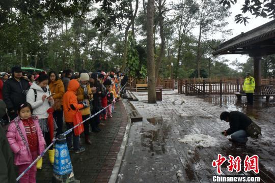 图为1月24日有关部门拉起警戒线防止游客进入观景台,以防摔跤。 蒋雪林 摄