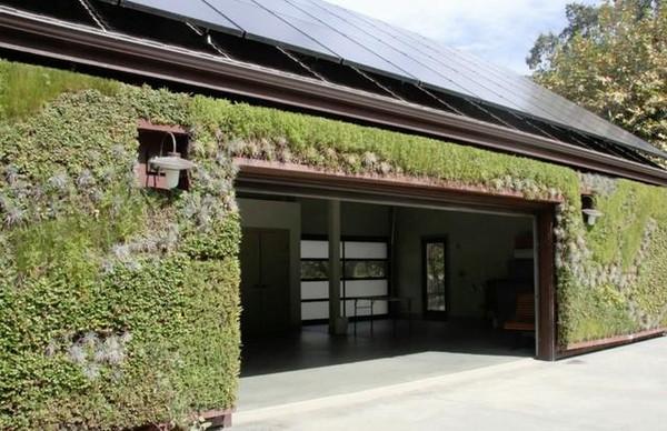 年轻人自建房 学学人家屋顶花园吧