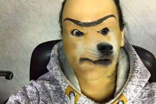 有人把狗的图像P上去,与曼蒂新纹的眉毛配在一起。