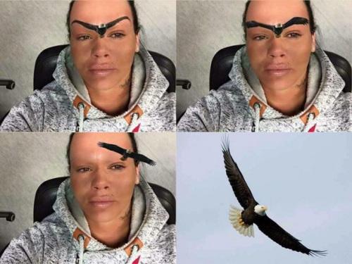 有人把鹰的图像P上去,与曼蒂新纹的眉毛配在一起。