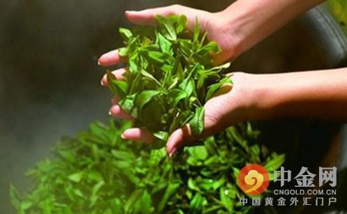 华东林交所董事长沈国华表示,茶业运营中心将对茶企的生产、销售、检测等环节制定统一标准,从而减少中间环节,提升茶叶品牌的影响力和竞争力,带动整个茶叶行业向品牌化方向发展,促进茶叶产业转型升级。