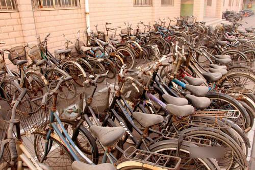 山东某高校现自行车坟场