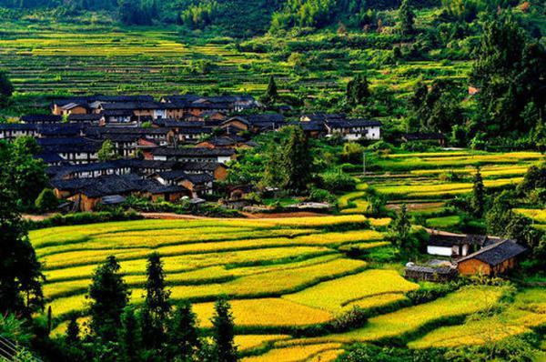 """全南县位于江西省最南端,与广东省山水相连,素有""""江西南大门""""之称,境内风光秀丽,气候宜人,生态环境优越。全南原名虔南,因地处虔州(今赣州)之南而得名。"""