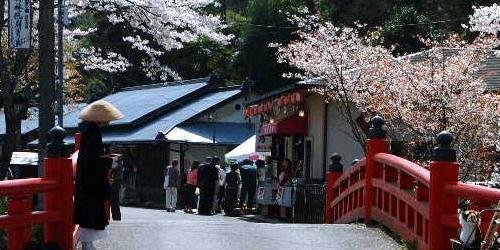 日本留学申请热门人气专业有哪些
