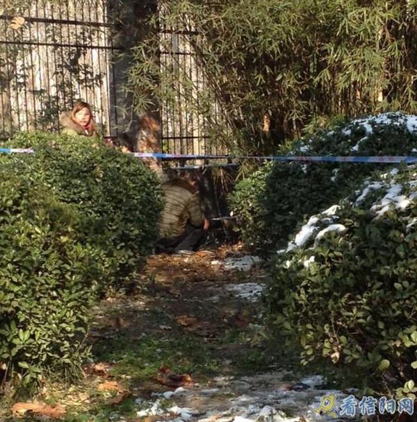 河南罗山县一女子醉死在小竹林图片