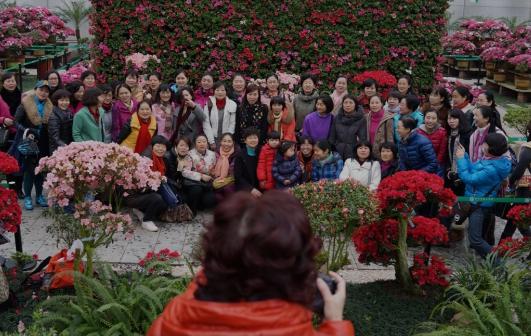 全世界范围最大、种类至多、花色最全的杜鹃花会克日在湖南湘潭盘龙大观园举行