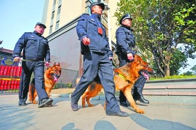 """武汉:政府""""请""""19条护卫犬帮居民看家(图)"""