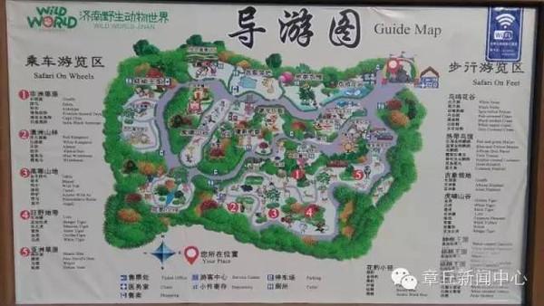 【景区资讯】济南野生动物园金猴闹新春,属猴游客可享