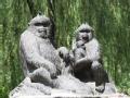 跟着猴子游北京