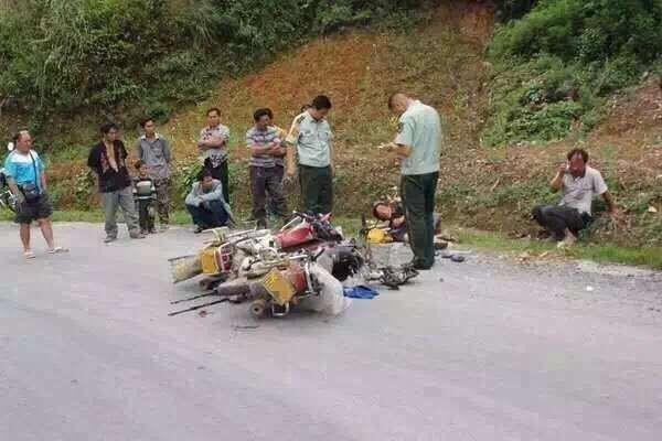 广东梅州车祸_两只鹅的命运,究竟是凶杀剧?还是言情剧?看真相