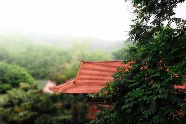 观山:南京老山国家森林公园图片