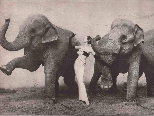 现代神秘蒙娜丽莎:50 年代的绝美超模