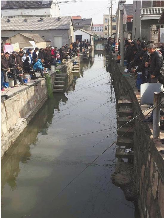 土豪万元买鱼放河供300多人垂钓:高兴就好(图)