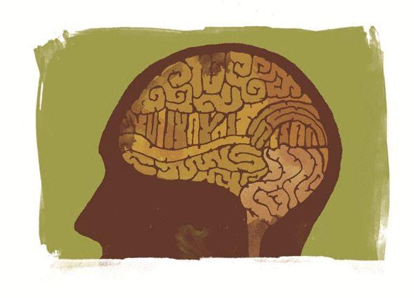 跑步延缓脑萎缩?专家称心脑血管健康者慢一半,veidibaoshi哈丁鱼博客