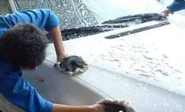 洗车等于毁车?洗车容易忽略的细节