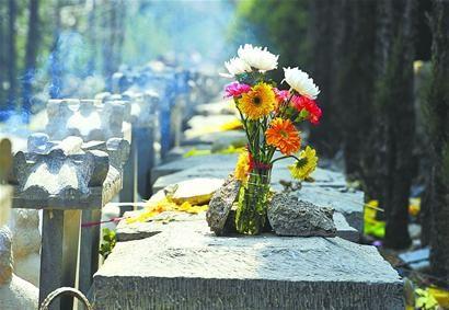 家庭成员合葬,你支持吗