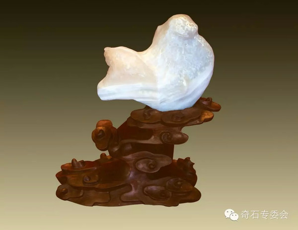中国最贵的奇石,你见过吗