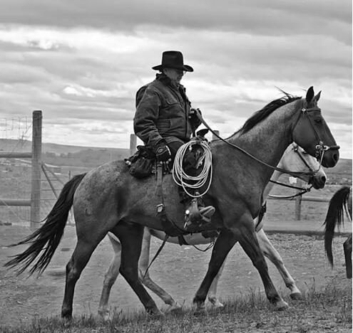 电影美国西部牛仔片_美国西部牛仔电影-想知道美国西部牛仔大片有哪些?