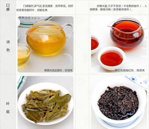 如何鉴别普洱茶的品质好不好
