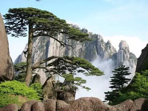 有个世界级珍宝,叫苏州园林
